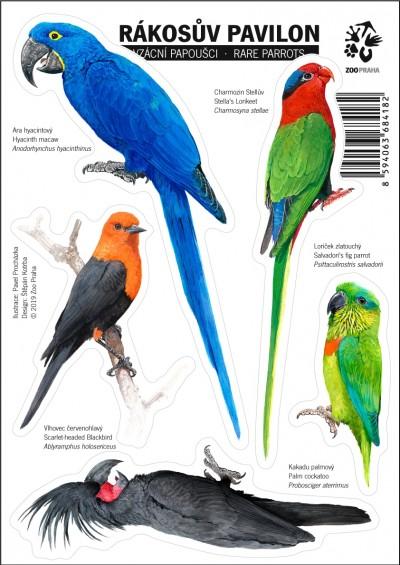 Samolepky s motivy vzácných papoušků ze Zoo Praha I