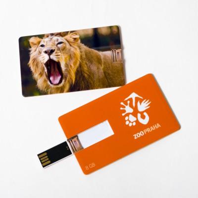 USB flash disk s motivem lva