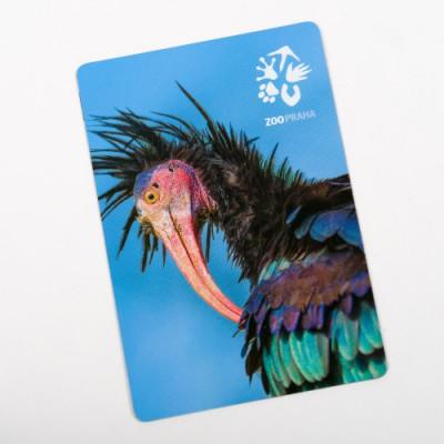 Magnetka s motivem ibise