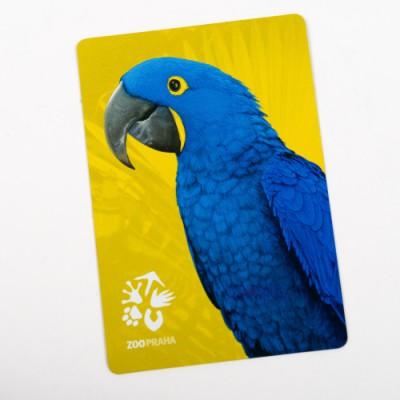 Magnetka s motivem papouška ary