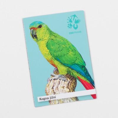 Magnetka s motivem papouška – kogna jižní