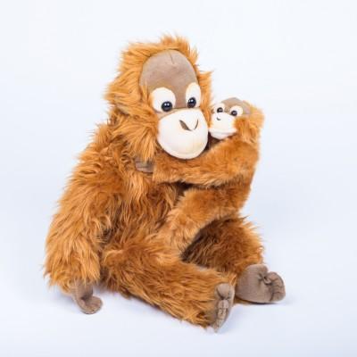 Orangutan - matka s mládětem