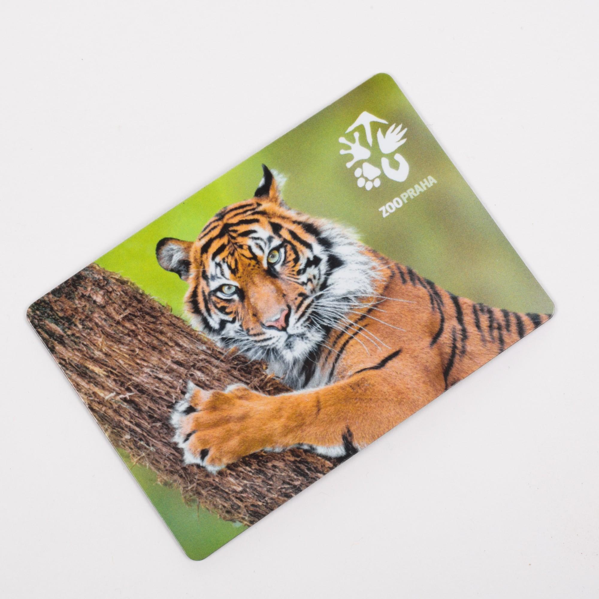 Magnetka s motivem tygra