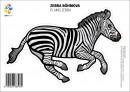 Samolepka – Zebra Böhmová