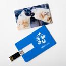 USB flash disk s motivem medvěda ledního