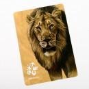magnetka lva