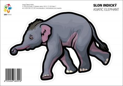 Samolepka – Slon indický
