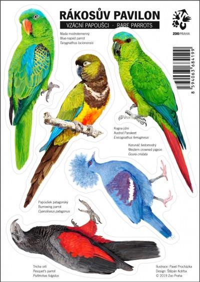 Samolepky s motivy vzácných papoušků ze Zoo Praha II