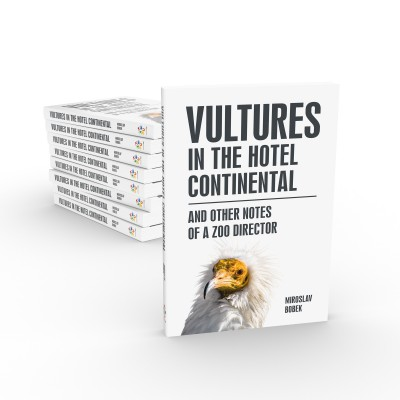 Vultures in the hotel Continental and other notes of a zoo director