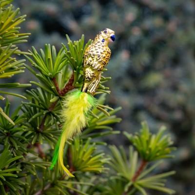 Ručně malovaná vánoční ozdoba s motivem papouška – andulka vlnkovaná
