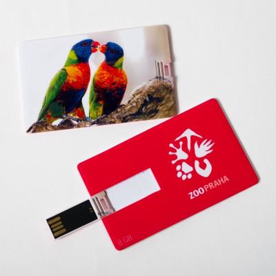 USB flash disk s motivem papoušků