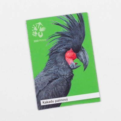 Magnetka s motivem papouška – kakadu palmový