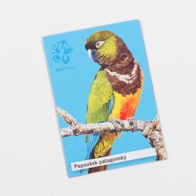 Magnetka s motivem papouška – papoušek patagonský