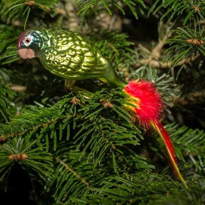 Ručně malovaná vánoční ozdoba s motivem papouška – amazoňan rudoocasý