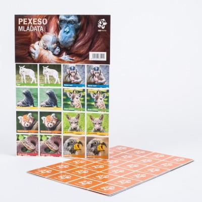 Pexeso - mláďata ze Zoo Praha
