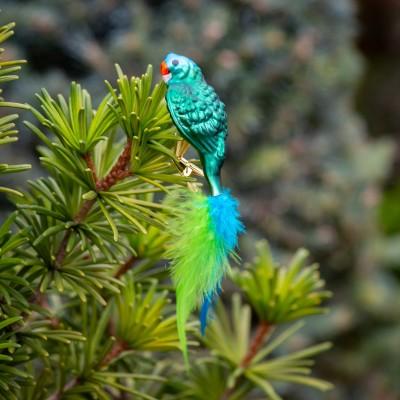 Ručně malovaná vánoční ozdoba s motivem papouška – mada modrotemenný