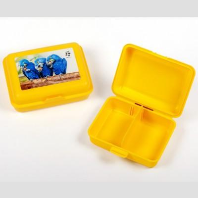 Svačinový box