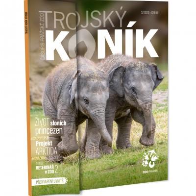 Trojský koník – sloní princezny