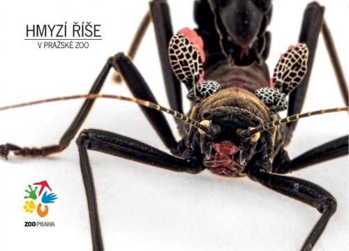 Hmyzí říše – strašilka ďábelská