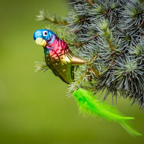 Ručně malovaná vánoční ozdoba s motivem papouška - amazoňan jamajský