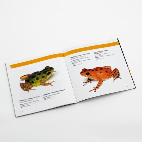 Brožura Šípové žáby