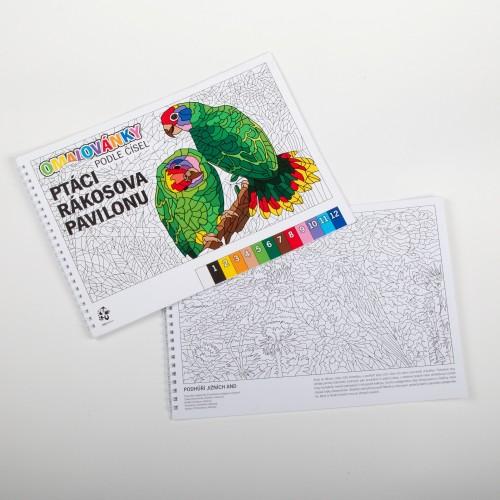 """Originální omalovánky podle čísel - """"Ptáci Rákosova pavilonu"""""""
