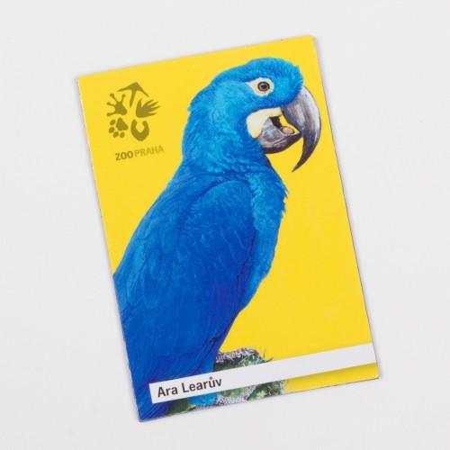 Magnetka s motivem papouška – ara Learův