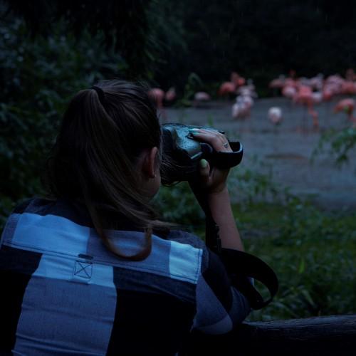 Noční výprava s termokamerou