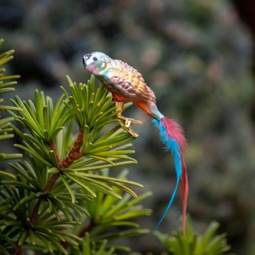Ručně malovaná vánoční ozdoba s motivem papouška – papoušek žlutoramenný