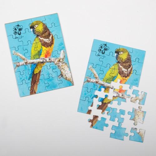 Puzzle papoušek patagonský