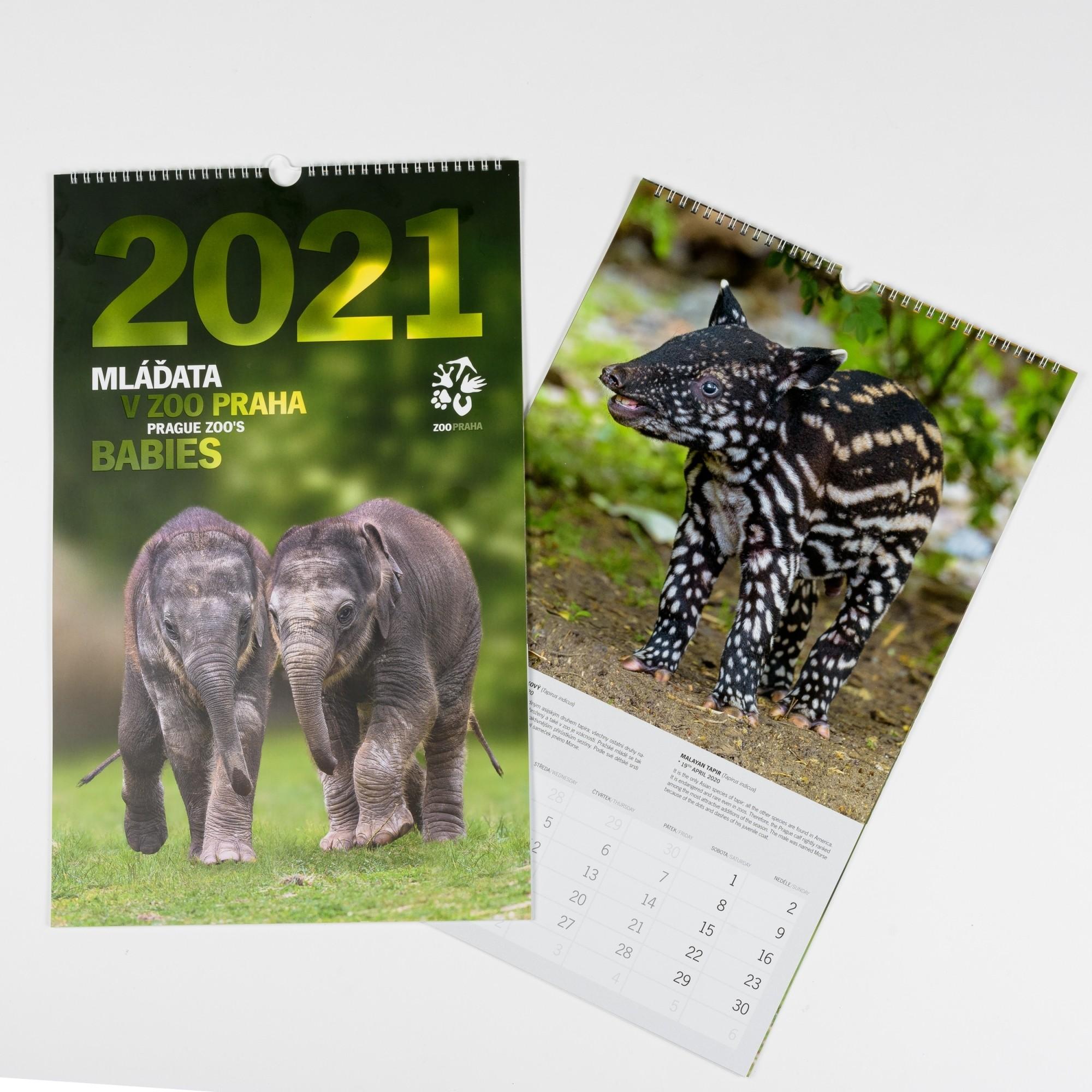 Nástěnný kalendář 2021